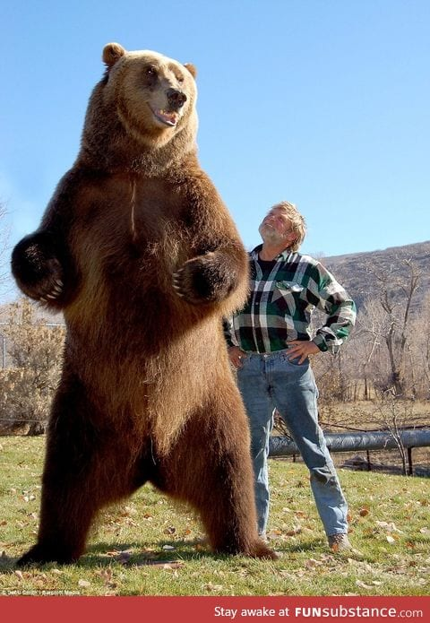 Doug Seus and the Bear he has cared for since he was young