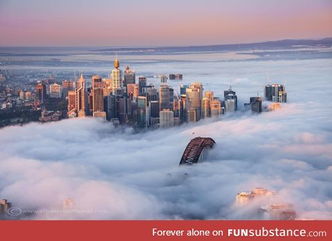 Sydney, Australia, covered in a thick winter fog