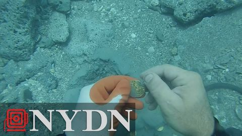 Diver finds $1,000,000 worth of gold coins off Florida coast