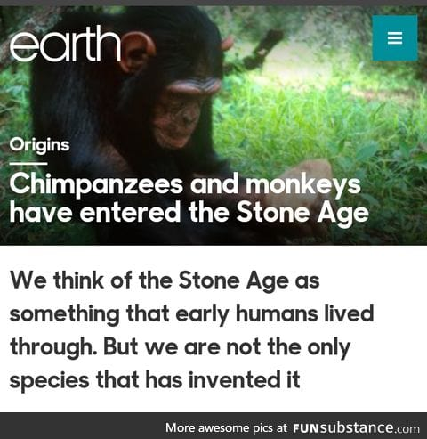 Welp. Hope y'all learned from planet of the apes