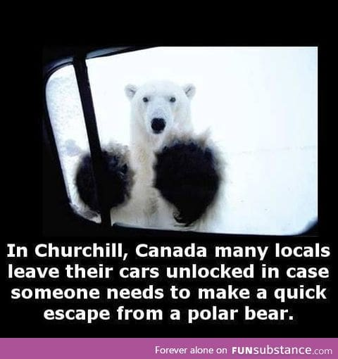 Oh Canada, you never cease to amaze me
