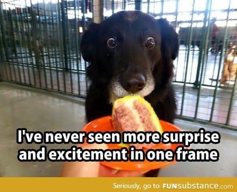 Surprise!!!!
