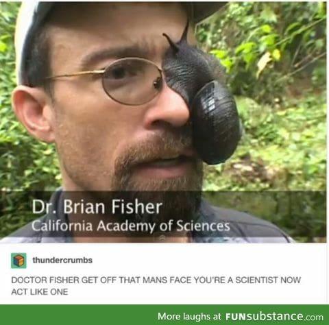 Dammit Dr, not again