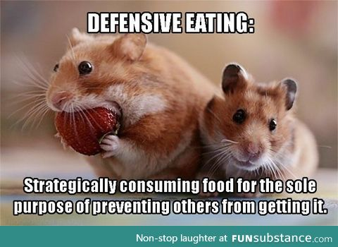 I'm that hamster...