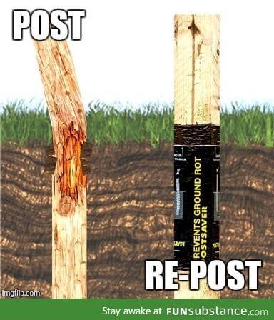 Repost!