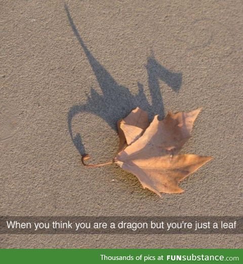 Beleaf in yourself