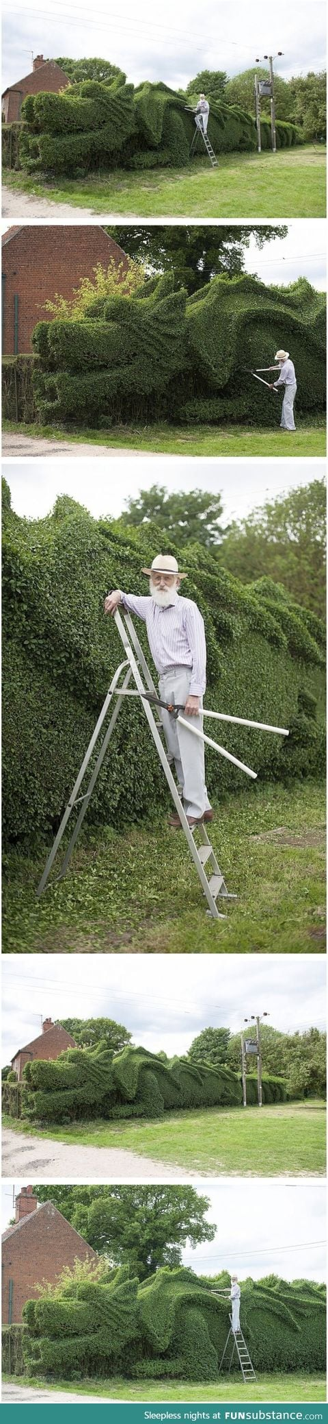 Elderly gardener spent the last 13 years turning his 150-ft-long hedge into this