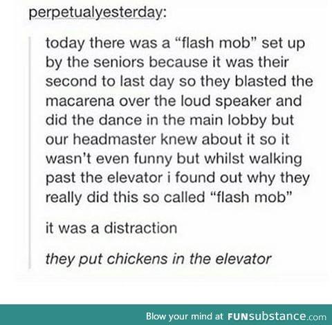 /best senior prank/