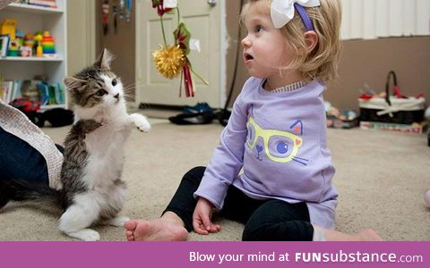A girl who lost arm to cancer receives three-legged kitten for Christmas