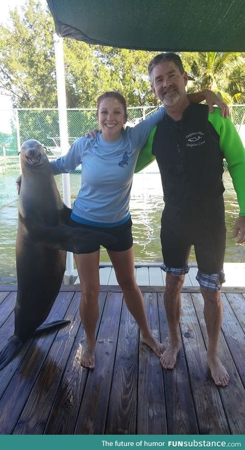 The look on that seals face