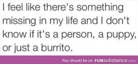 A taco, definitely taco!