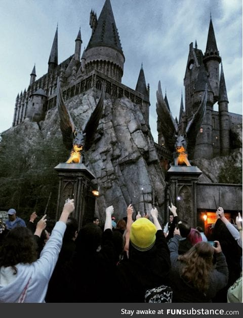 HP fans pay tribute to Alan Rickman at Universal Studios