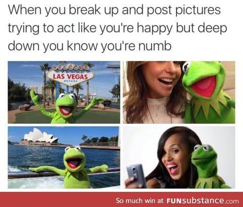 Poor Kermit