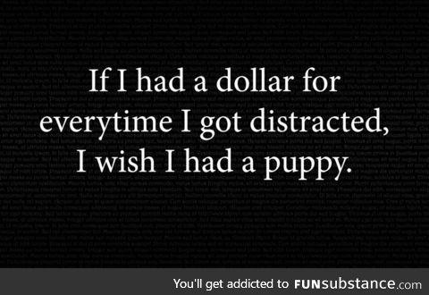 I wish I had a puppy too!
