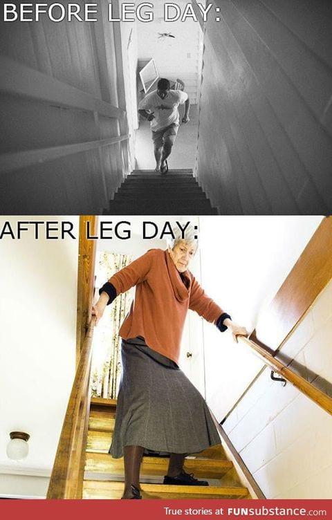 Leg day reality