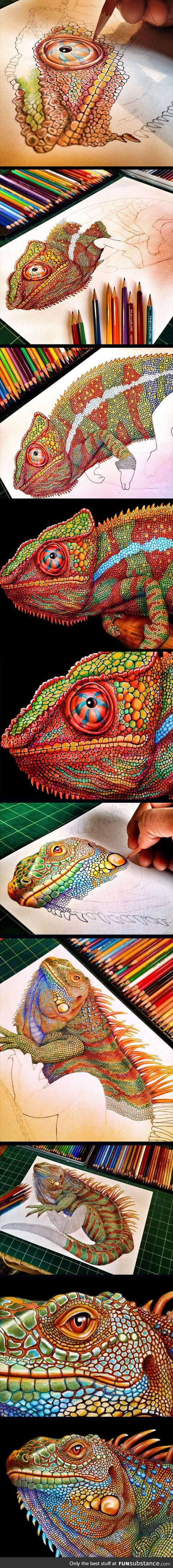 Incredibly Detailed Drawing Of A Chameleon Using Color Pencils