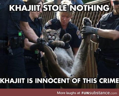 Poor khajiit