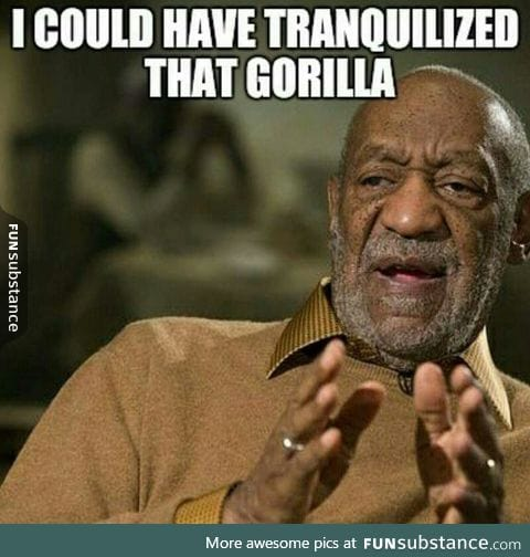 He could have saved that gorilla