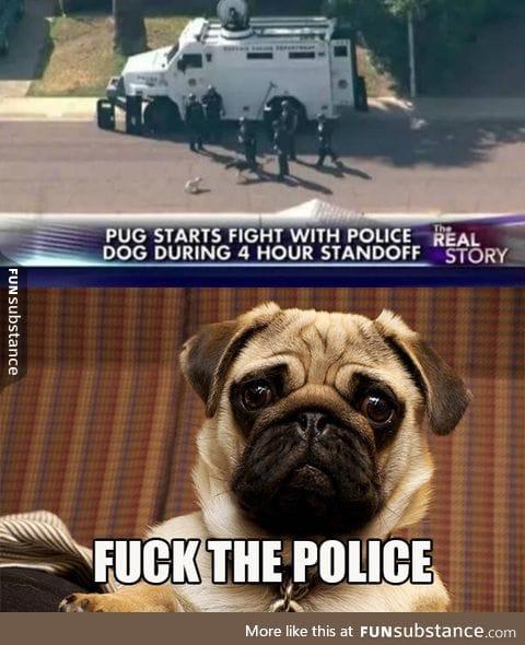 Pug the police