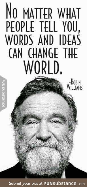 the man, Robin Williams