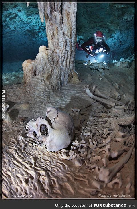 Imagine seeing this while you are scuba diving in a sea cave