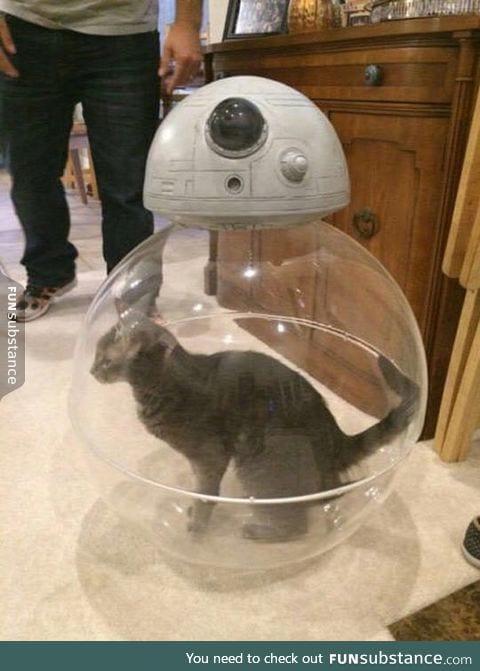 Inside BB-8