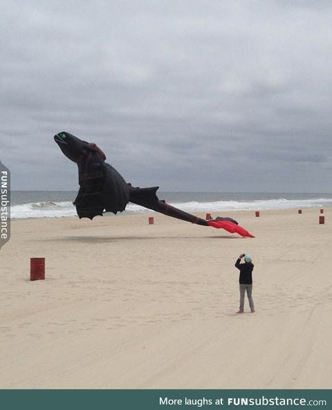 Toothless kite on the beach