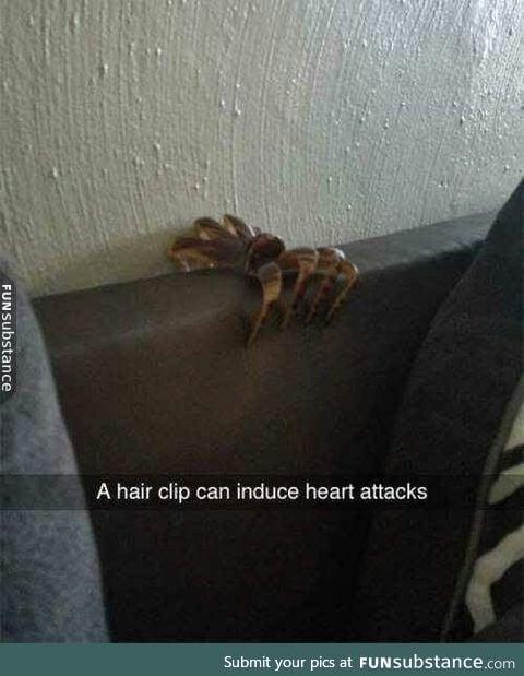 Hair clip horror