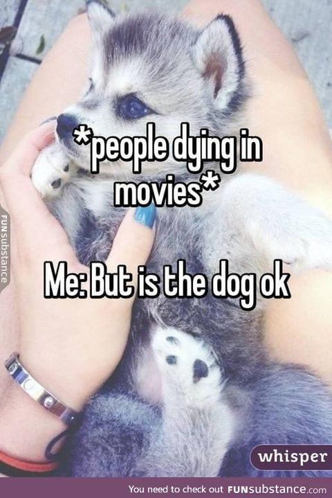 doggo better be okay or else
