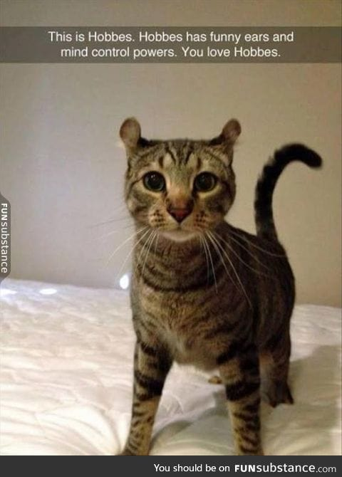 He is also telling you to feed him tuna with his powers...