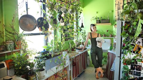 Woman has over 500 plants in New York City appartment