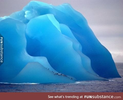 Penguins on a flipped iceberg