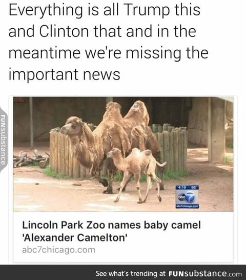 This is the type of news I want to be seeing