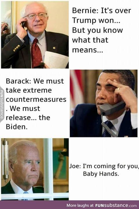 The Biden