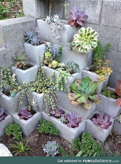 Cinder block garden win