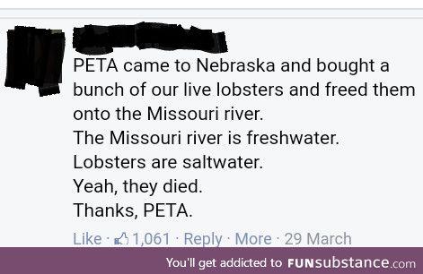 Thanks peta!!!!