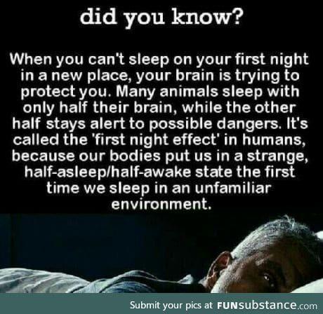 First Night Effect (emulating the Half-Asleep Half Awake thingy)