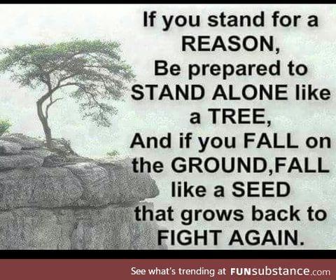 Be like tree