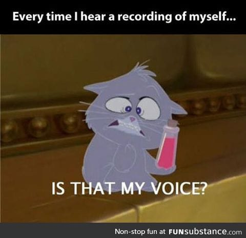 Whenever I hear a recording of my voice