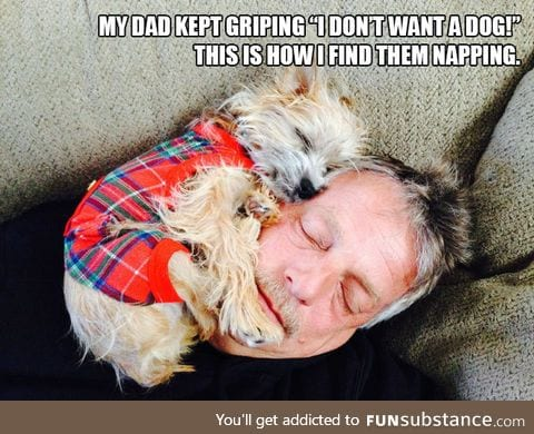 Dads Who Didn't Want Any Dogs In Their Lives
