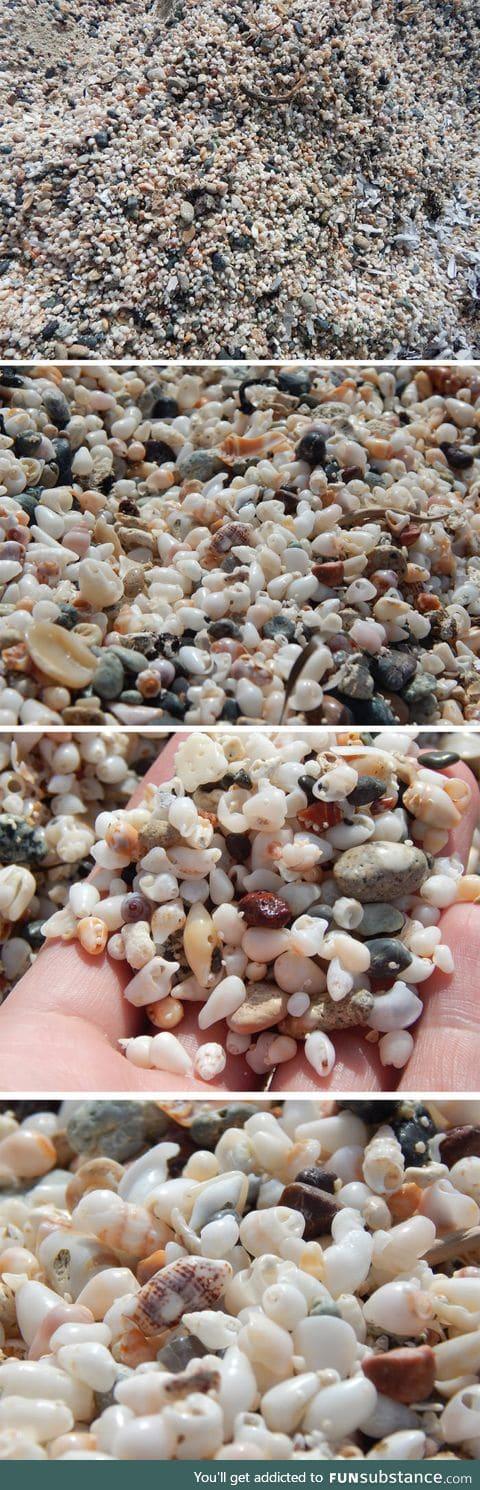 A beach made of tiny shells