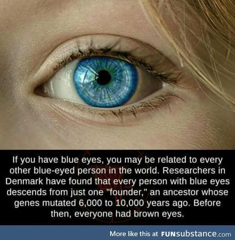 People with blue eyes share the same parent