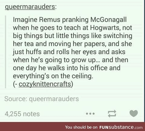 McGonagall getting him back by enchanting his quill to write backwards.