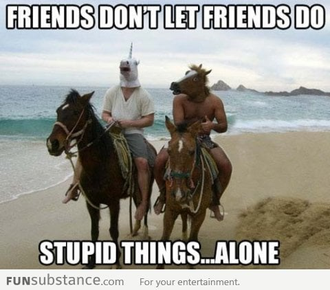 Friends Don't Let Friends Do Stupid Things