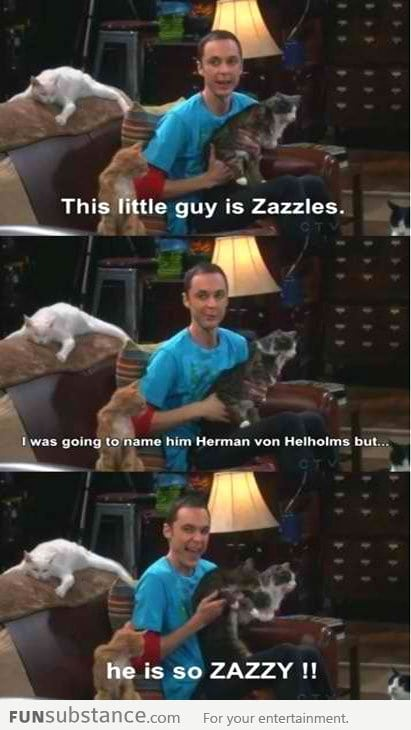 Sheldon's cat