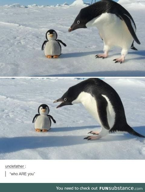 You are noot one of us!