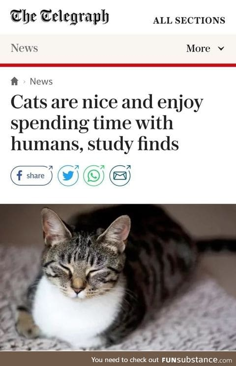 Finally some news we can all be happy to hear