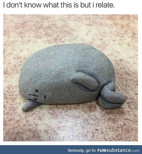 Even a rock feels relatable