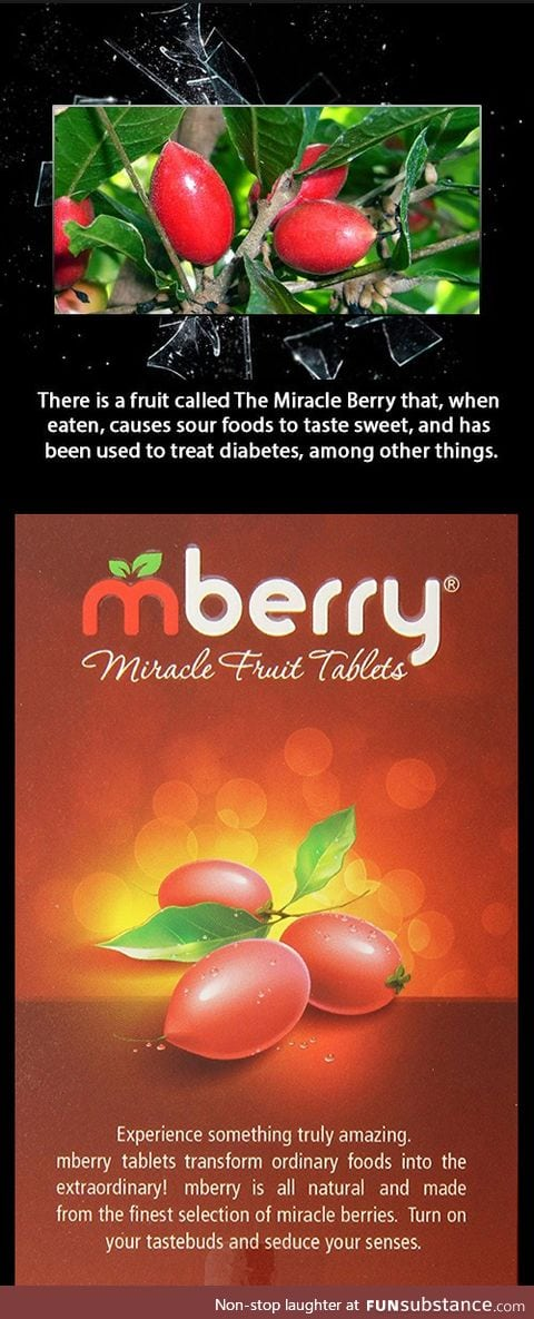 Miracle Berries can alter your taste buds so food taste different