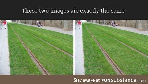 Identical photos illusion